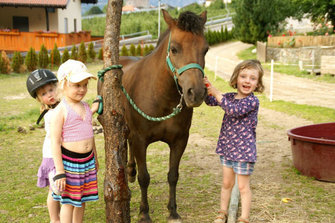 Stadlgut - Tarsch  - Latsch - Farm Holidays in South Tyrol  - Vinschgau