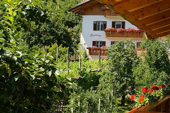 Schrenteweinhof  - Lana - Farm Holidays in South Tyrol  - Meran and surroundings