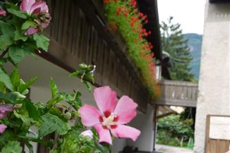 farm-reviews - Linserhof  - Lana - Farm Holidays in South Tyrol  - Meran and surroundings