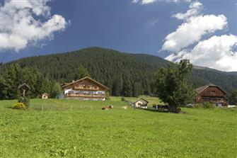 farm-reviews - Mahrhof - Taisten  - Welsberg-Taisten - Farm Holidays in South Tyrol  - Dolomites