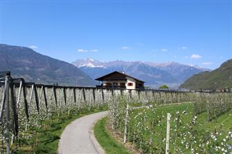 Gruberhof  - Burgstall - Farm Holidays in South Tyrol  - Meran and surroundings
