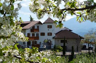Pflanzerhof  - Burgstall - Farm Holidays in South Tyrol  - Meran and surroundings