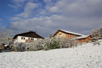 Haflingerhof  - Jenesien - Farm Holidays in South Tyrol  - Bozen and surroundings