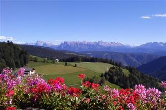 farm-reviews - Leitnerhof  - Jenesien - Farm Holidays in South Tyrol  - Bozen and surroundings