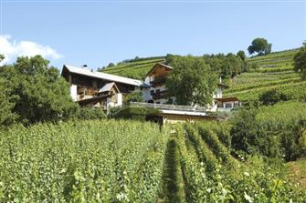 Strasserhof - Neustift  - Vahrn - Farm Holidays in South Tyrol  - Eisacktal
