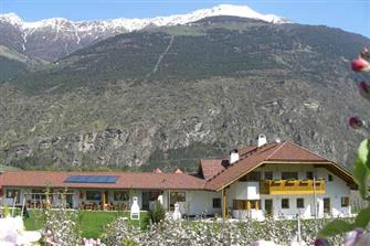 Heiligenhof  - Latsch - Farm Holidays in South Tyrol  - Vinschgau