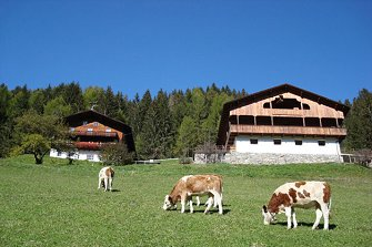 Hopfgartnerhof  - Mühlwald - Farm Holidays in South Tyrol  - Dolomites