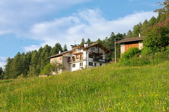Amort-Hof  - Altrei - Farm Holidays in South Tyrol  - Bozen and surroundings