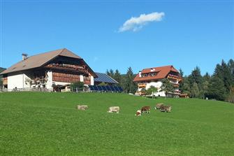 Feichtnerhof  - Ritten - Farm Holidays in South Tyrol  - Bozen and surroundings