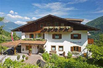 farm-reviews - Rasner-Hof  - Algund - Farm Holidays in South Tyrol  - Meran and surroundings