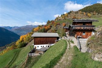 Waldhof  - Naturns - Farm Holidays in South Tyrol  - Meran and surroundings