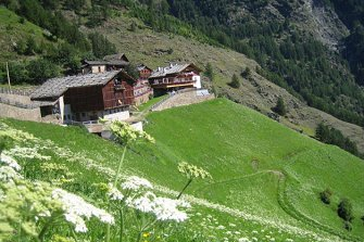 Pirchhof  - Naturns - Farm Holidays in South Tyrol  - Meran and surroundings
