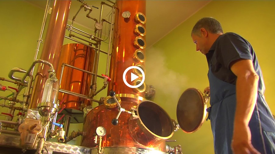 Video: Distillate production - from grapes to noble distillates